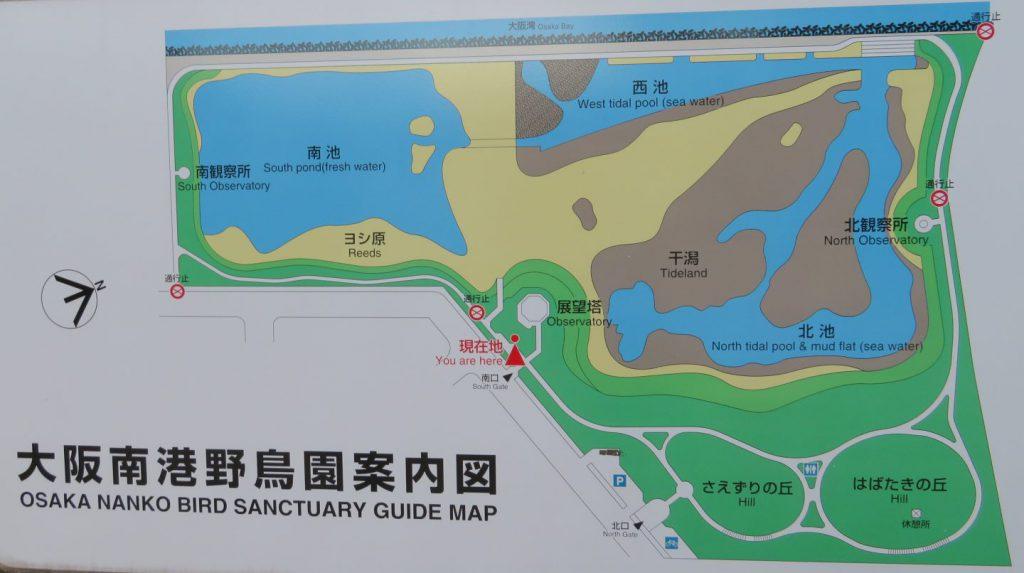 南港野鳥園案内図