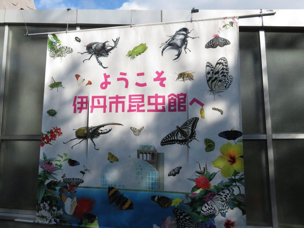 伊丹市昆虫館の良い点・悪い点