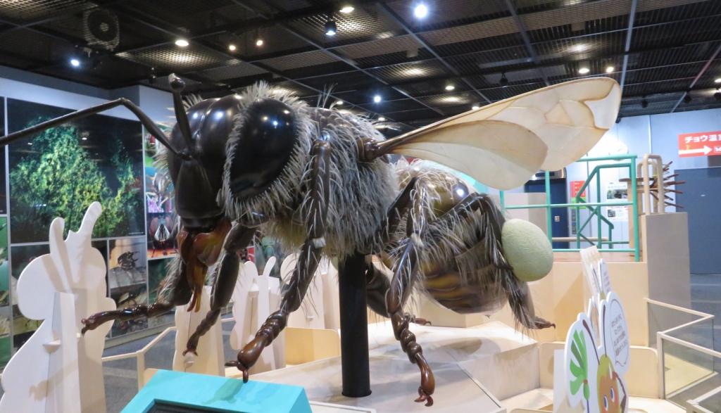 ミツバチの巨大模型