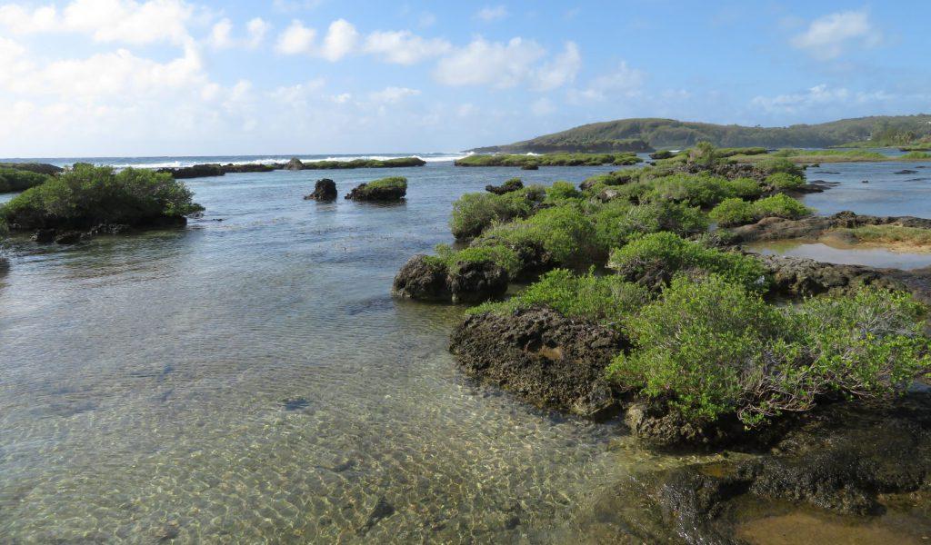 イナラハン天然プールの海水が流れ出る場所にある磯