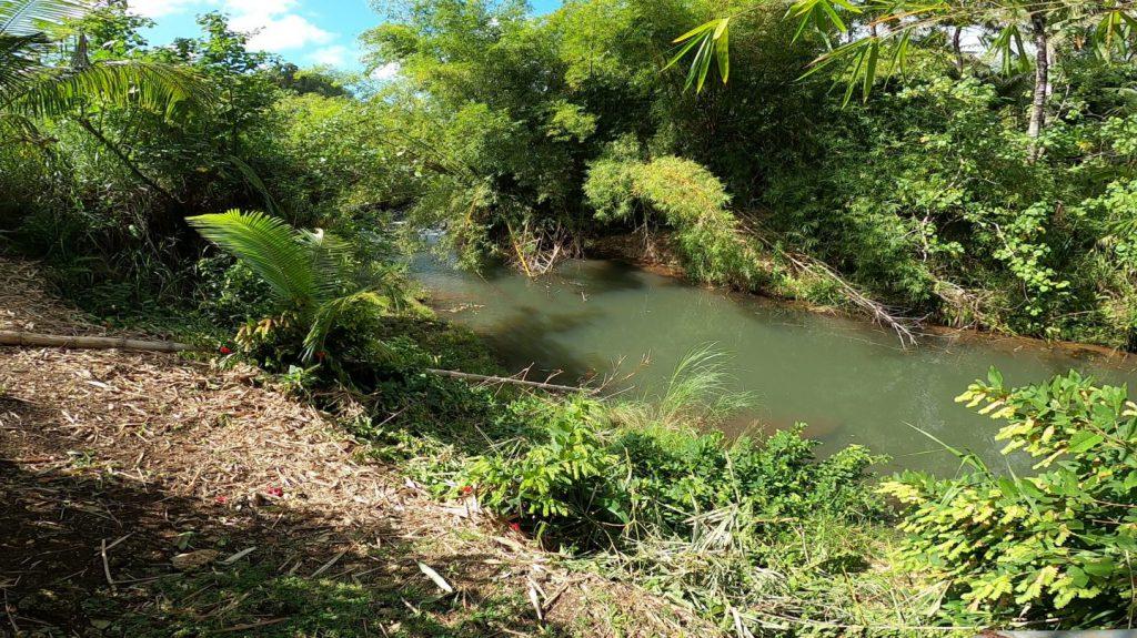 横井ケーブ脇の川