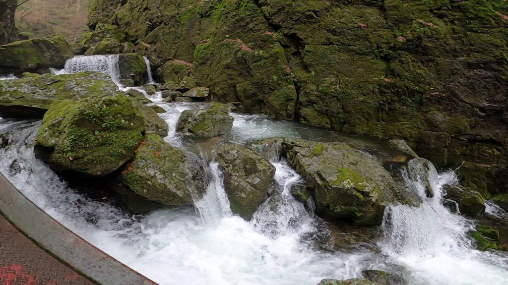 勢いよく流れる渓流