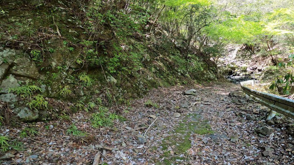 奈良の奥地にヤバすぎる道を発見!【荒れ果てた道路を探検】