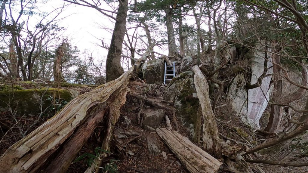 はしごが取り付けられいる山道