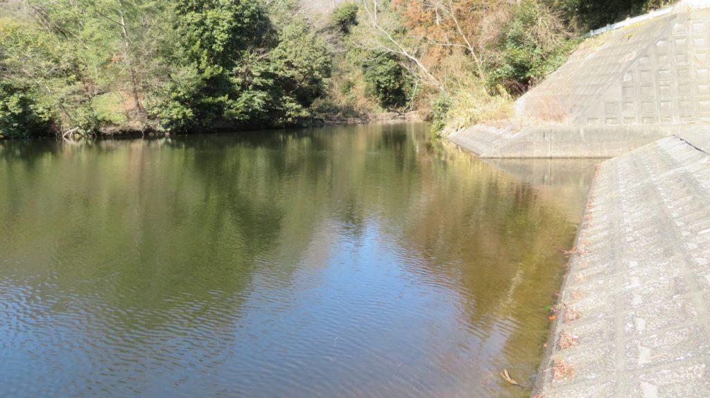 むろいけ園地の池