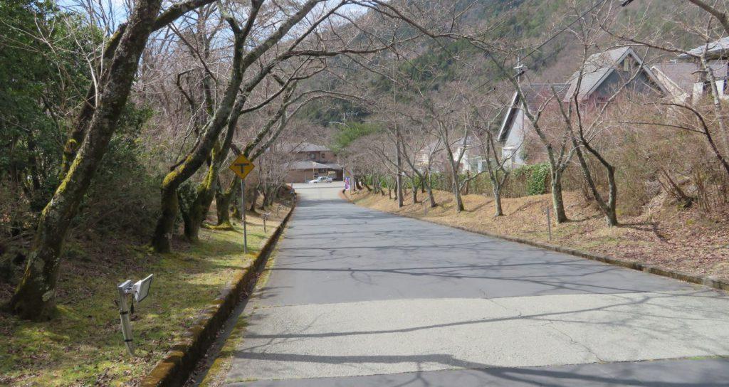 剣尾山への道