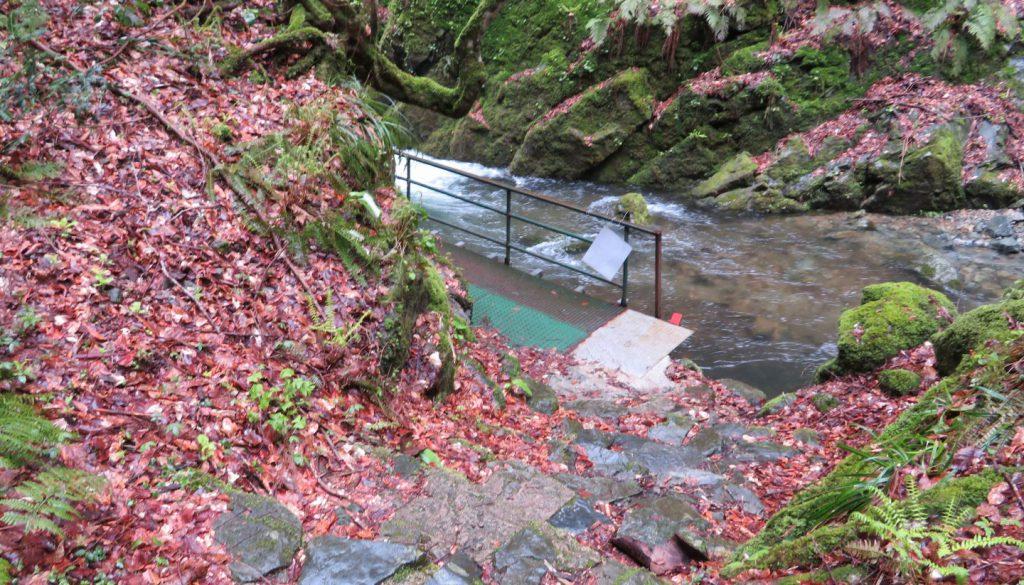 不動滝への道