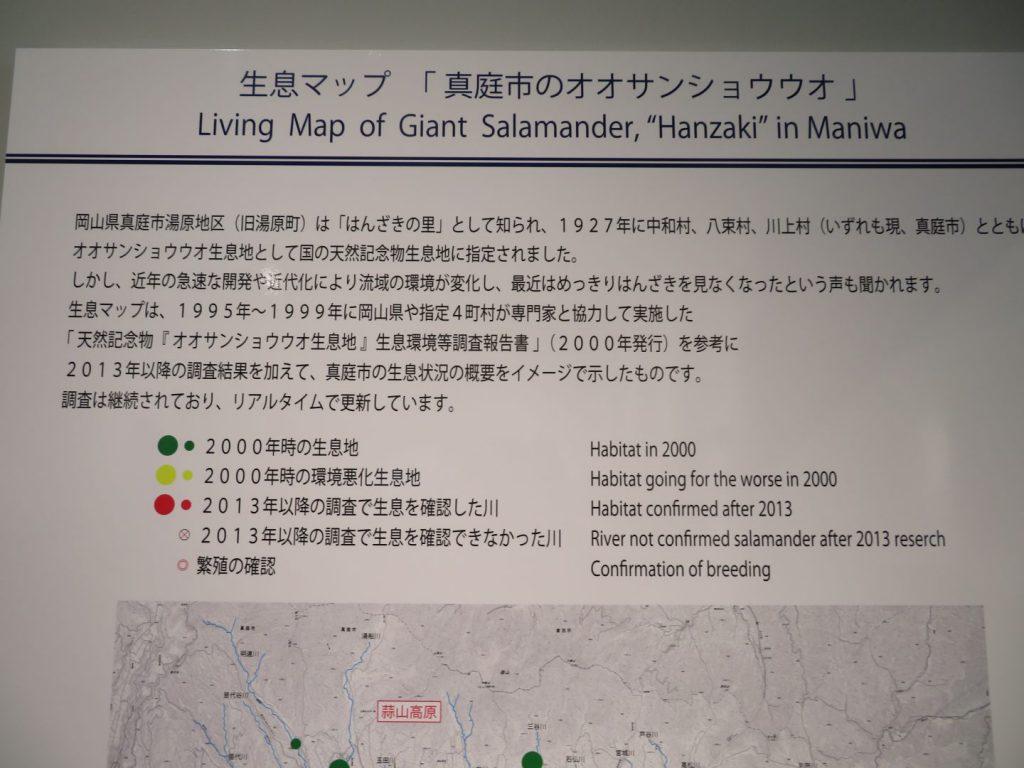 真庭市内のオオサンショウウオ生息マップ