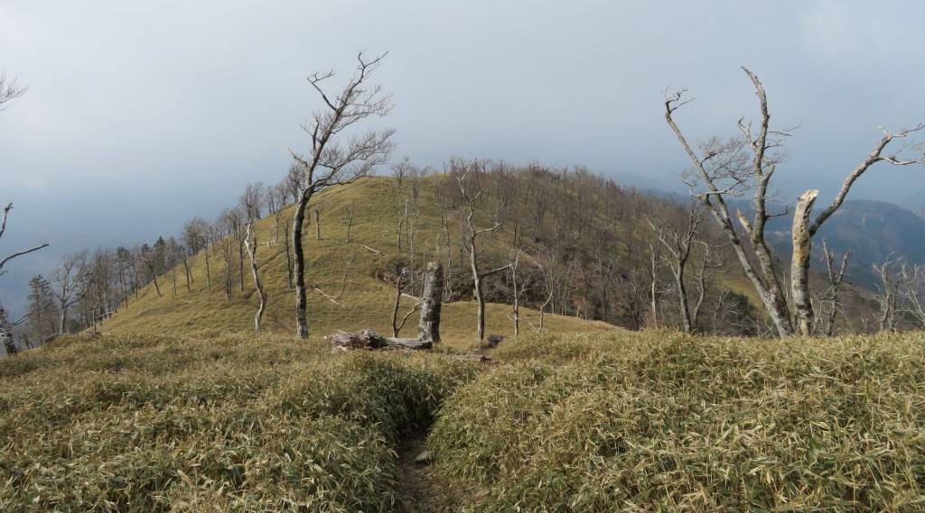 釈迦ヶ岳の尾根道