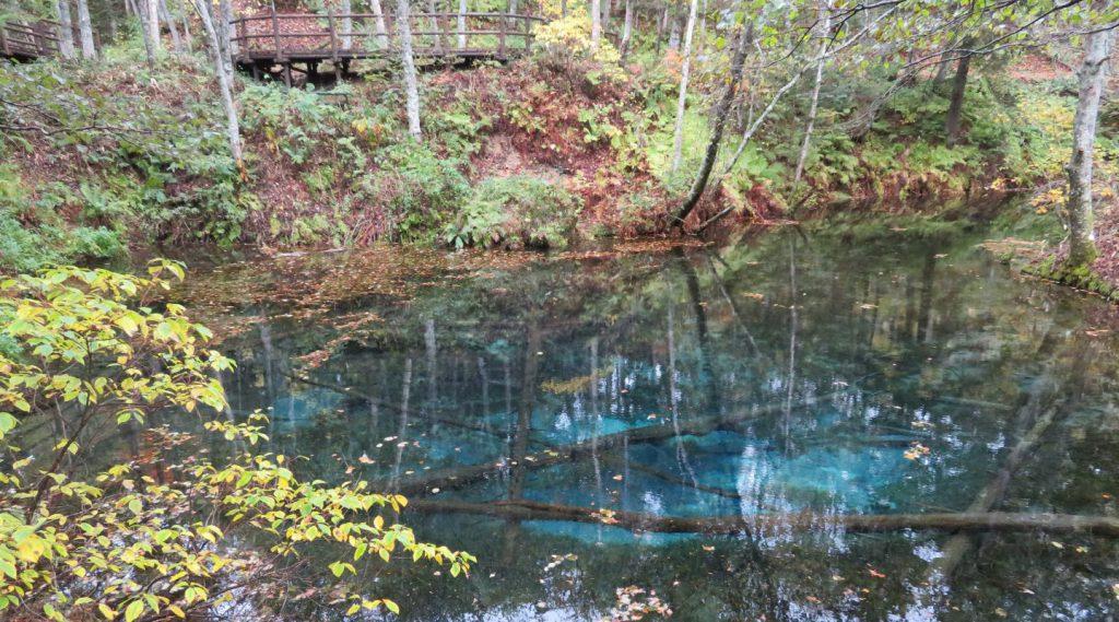 神の子池【美しすぎる神秘の池】
