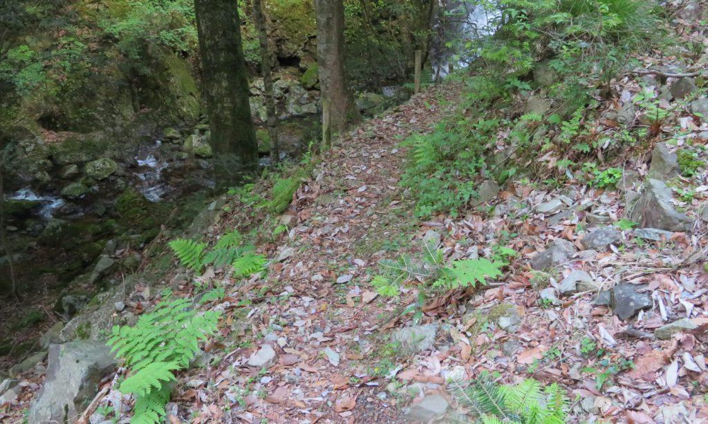 延ヶ滝に続く道