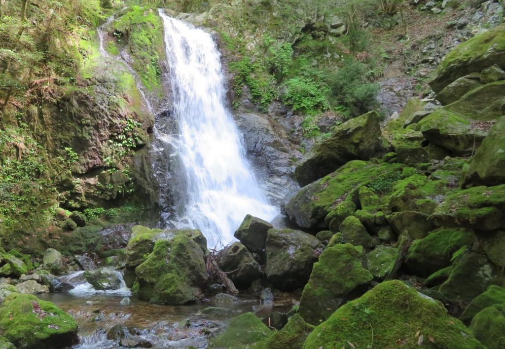 【延ヶ滝】秘境感あふれる兵庫西部の自然スポット