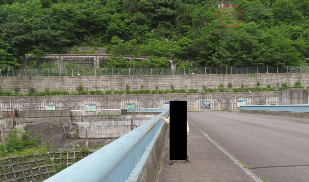 大滝ダムで鹿を見たポイント(赤枠内)