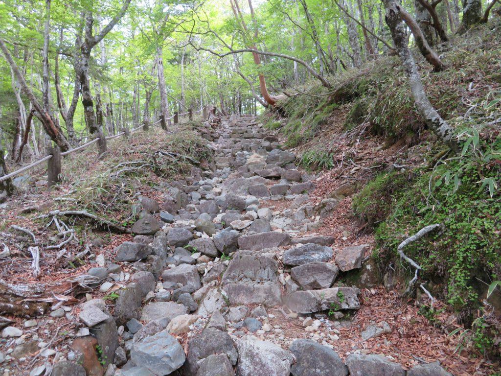大台ヶ原登山道