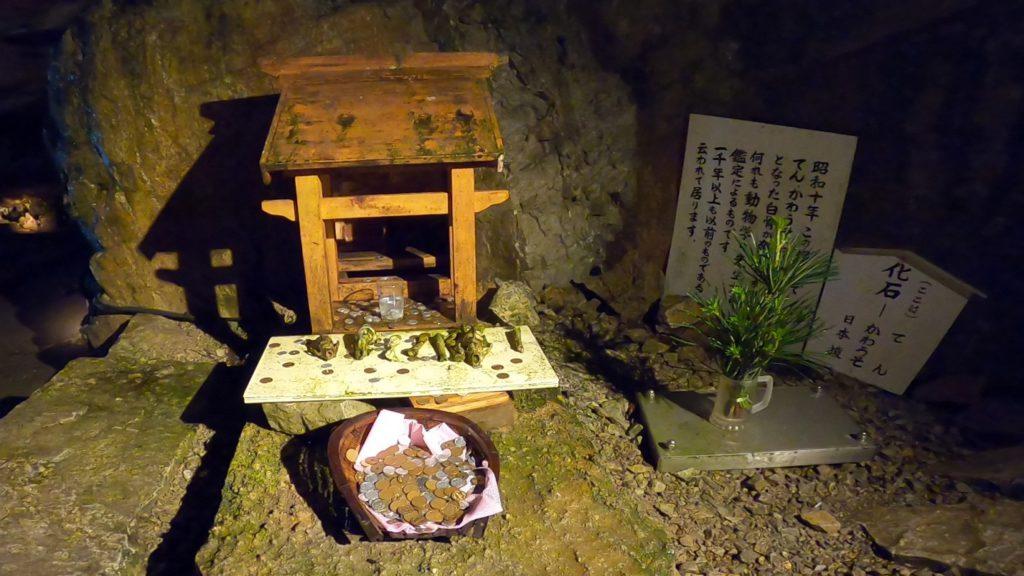 動物の白骨化石が祀られている祠