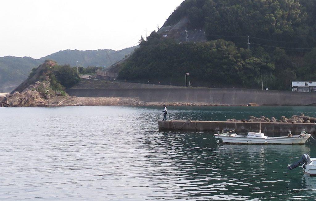 串本の漁港で海水魚採集【2020年夏2回目】